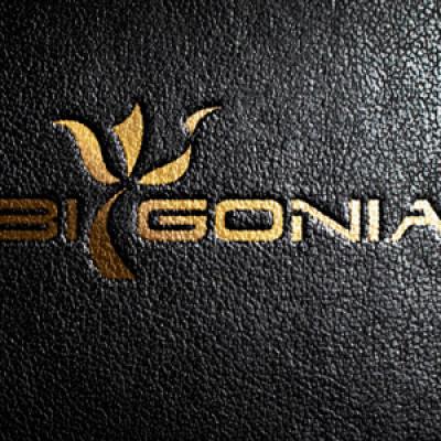 logofabrika_promo_4